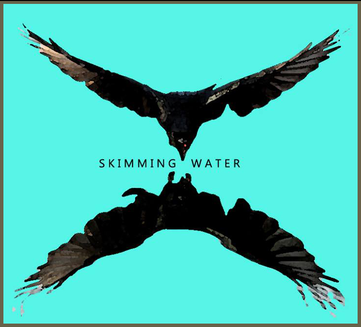 Skimming Water