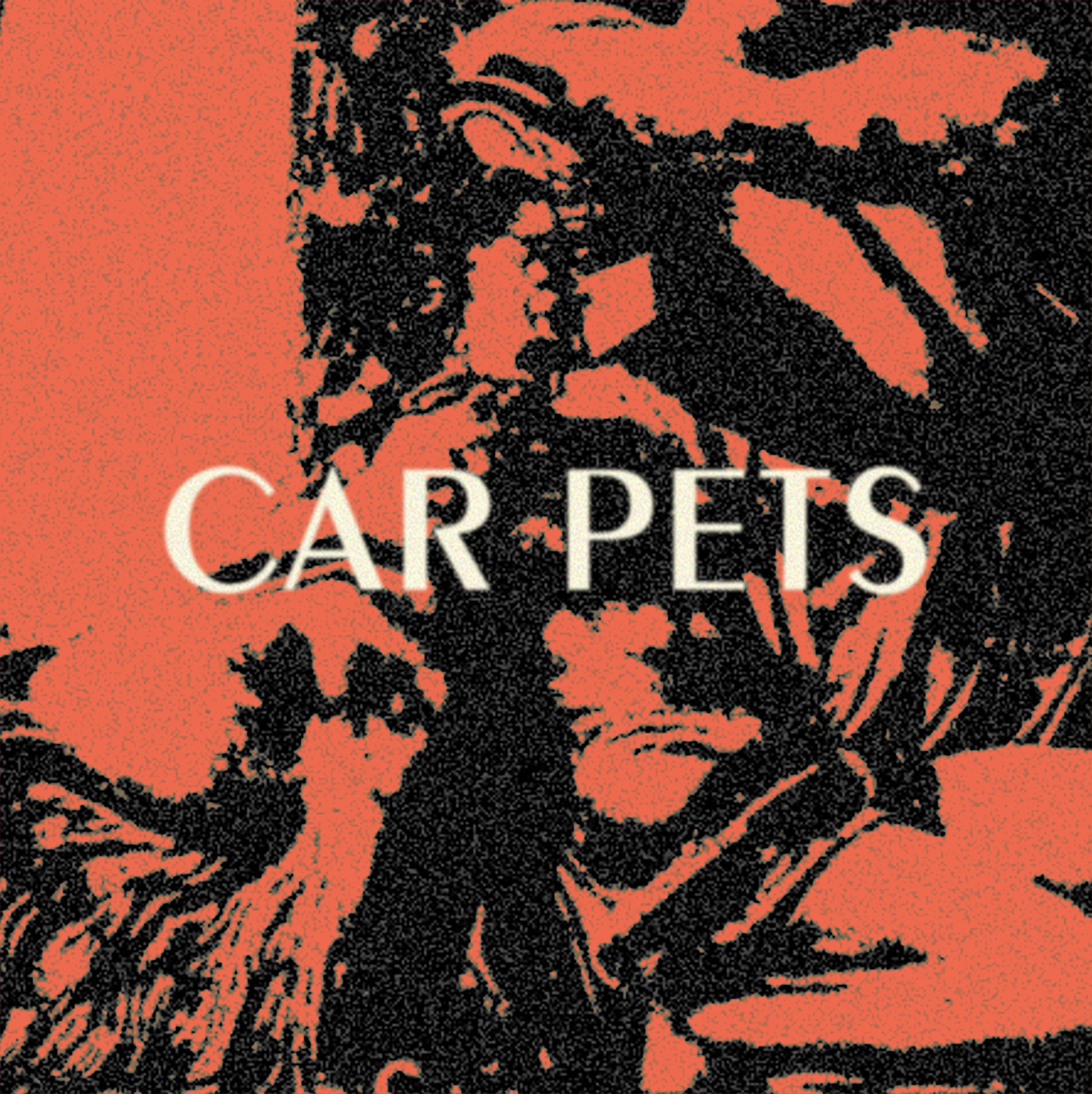Car Pets