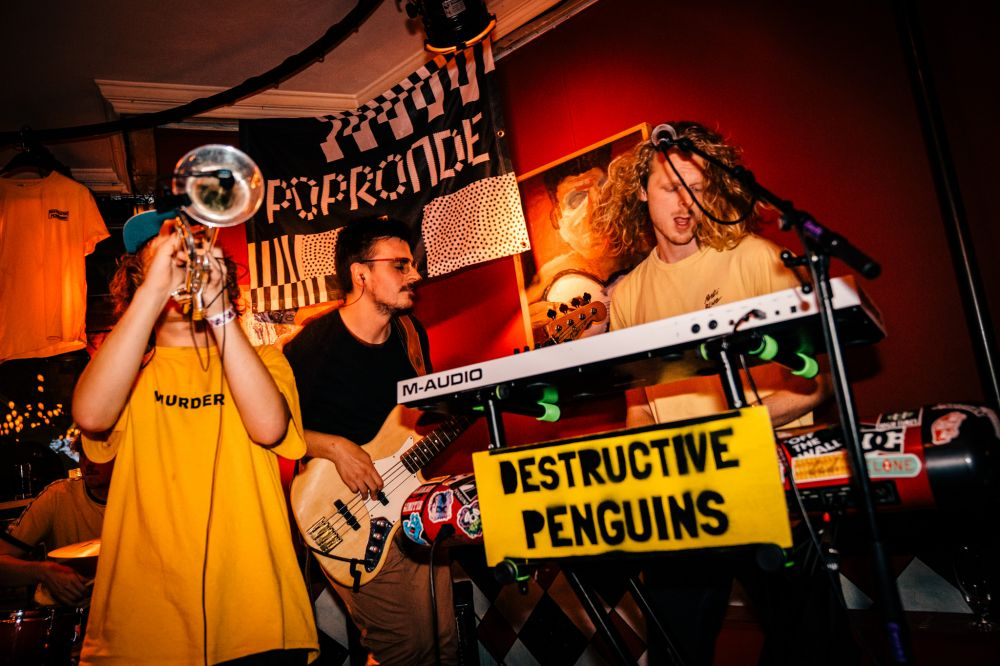 2019 - Jessie Kamp Fotografie (Destructive Penguins in Amersfoort)