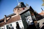 <span class='city'>Foto genomen in Harderwijk, door Sharon & Maureen Fotografie</span><div class='clear'></div>